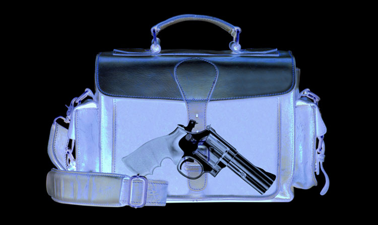 Securing Firearms While Traveling