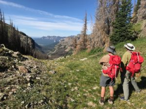 Two adult hikers with red backpacks and wide-brimmed hats take in the grandeur of a mountain vista while yellow flowers bloom in the sparse grass and wispy white clouds trail across a deep blue sky.