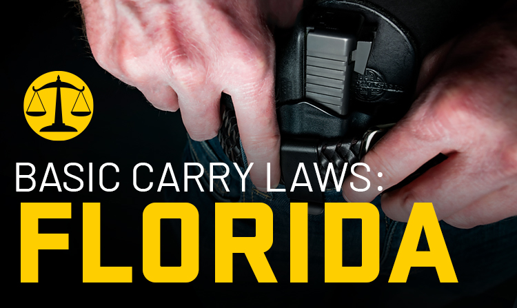 Basic Carry Laws: Florida
